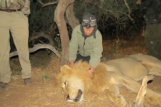 Fulbright Scholar Lauren Satterfield conducting field research